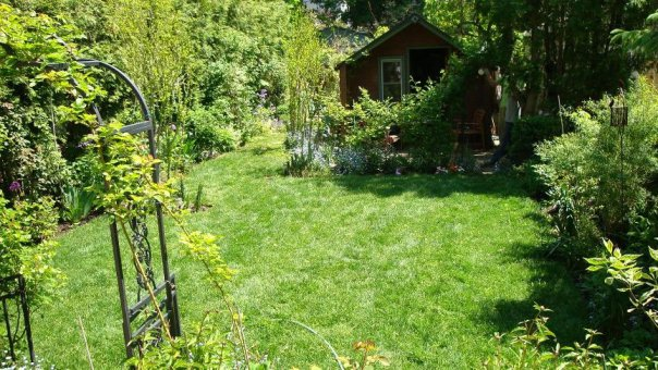 Sodding in Toronto, Beautiful garden made perfect with a freshly installed lawn (Sodding in Toronto)