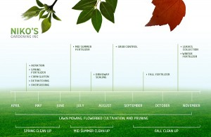 Niko's Lawn care and maintenance timeline Thornhill ON