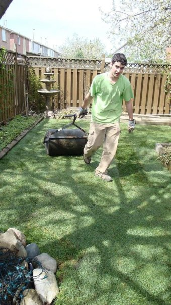 compacting freshly laid sod - sodding in Thornhill
