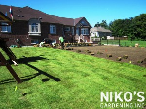 Sod Laying Etobicoke