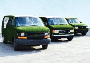 Niko's grass vans