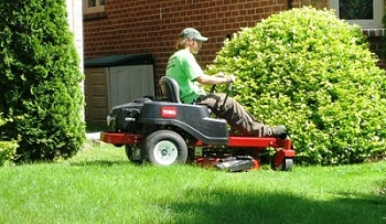 Proper Turf Lawn care and maintenance