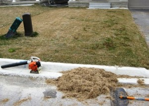thatch pile